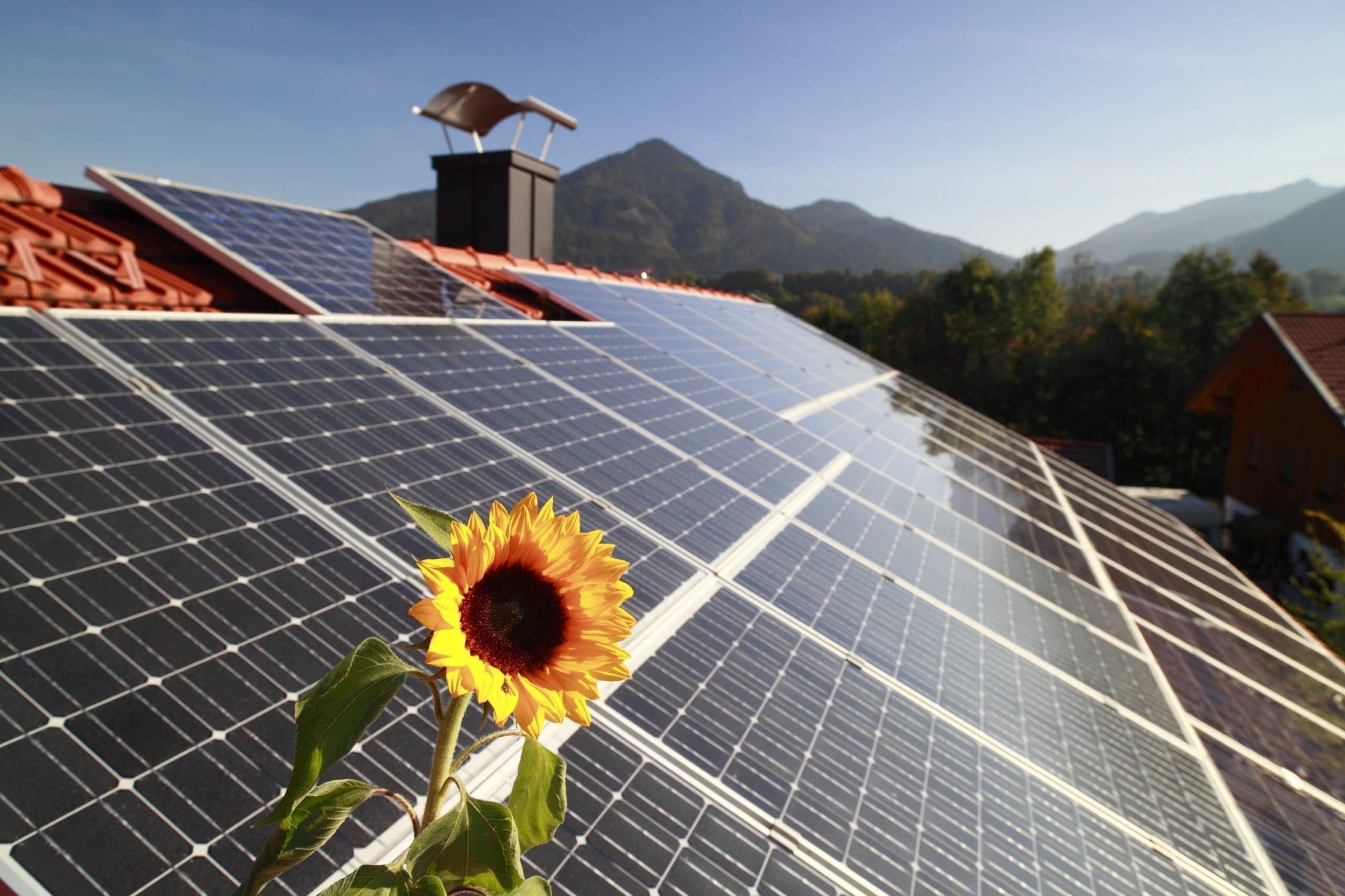 Our company: Faber-Com photovoltaic system